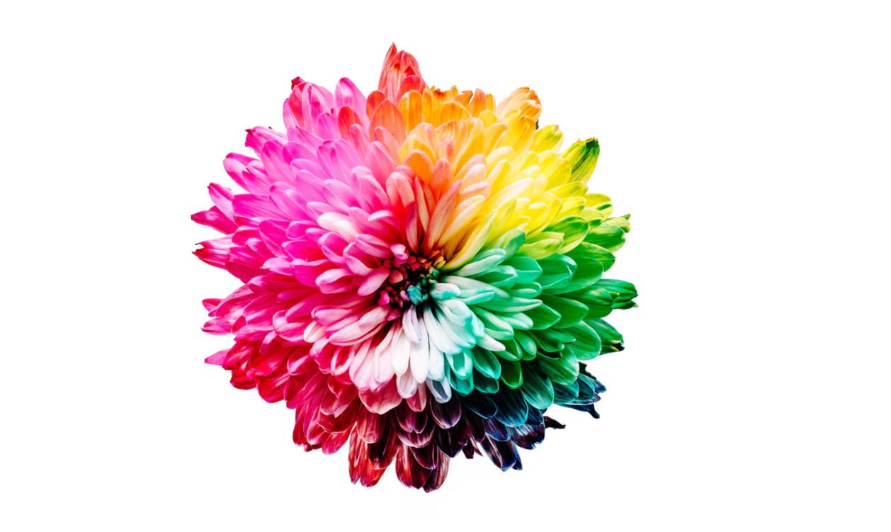 ¿Qué colores son los mejores para pintar tu salón y atraer más clientes?
